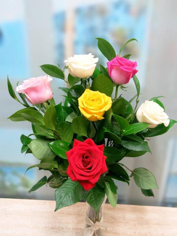 Bouquet de 6 Rosas variadas - Foto principal