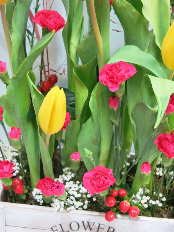 Tulips and mini carnation is a good combination. Send tulips in wooden box to your home - Foto 3